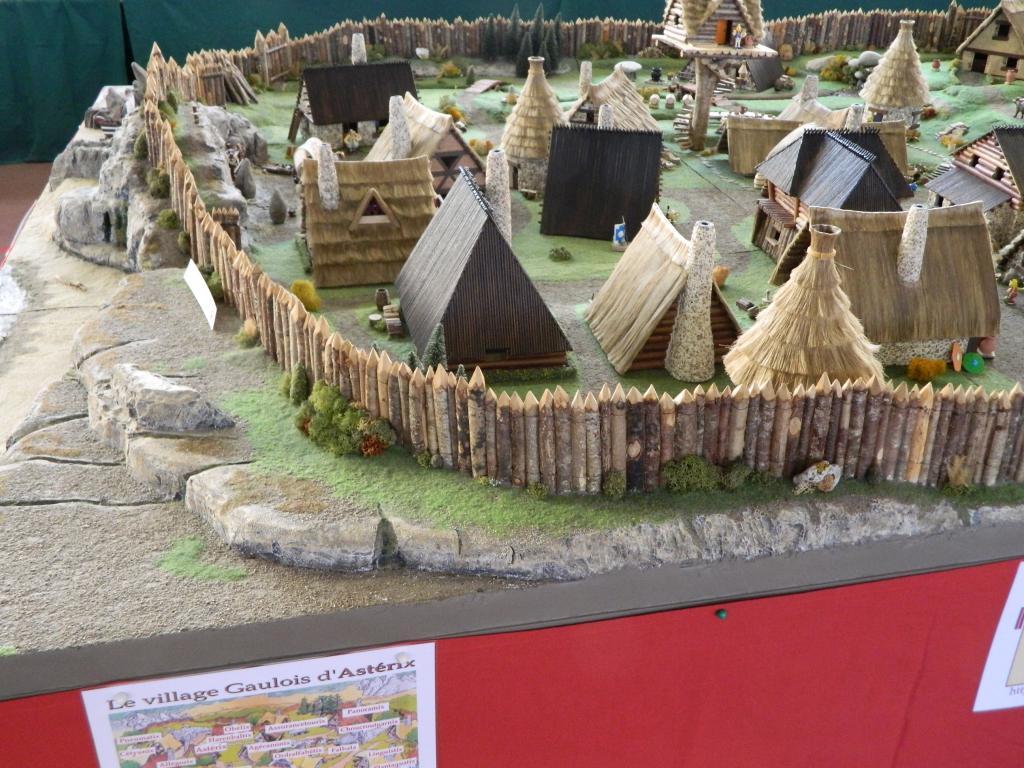 Le Village d'Astérix le Gaulois au 1/40  Dscn2988-3c06a40