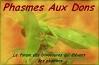 La charte du forum Phasmes-aux-dons-3d5d49a