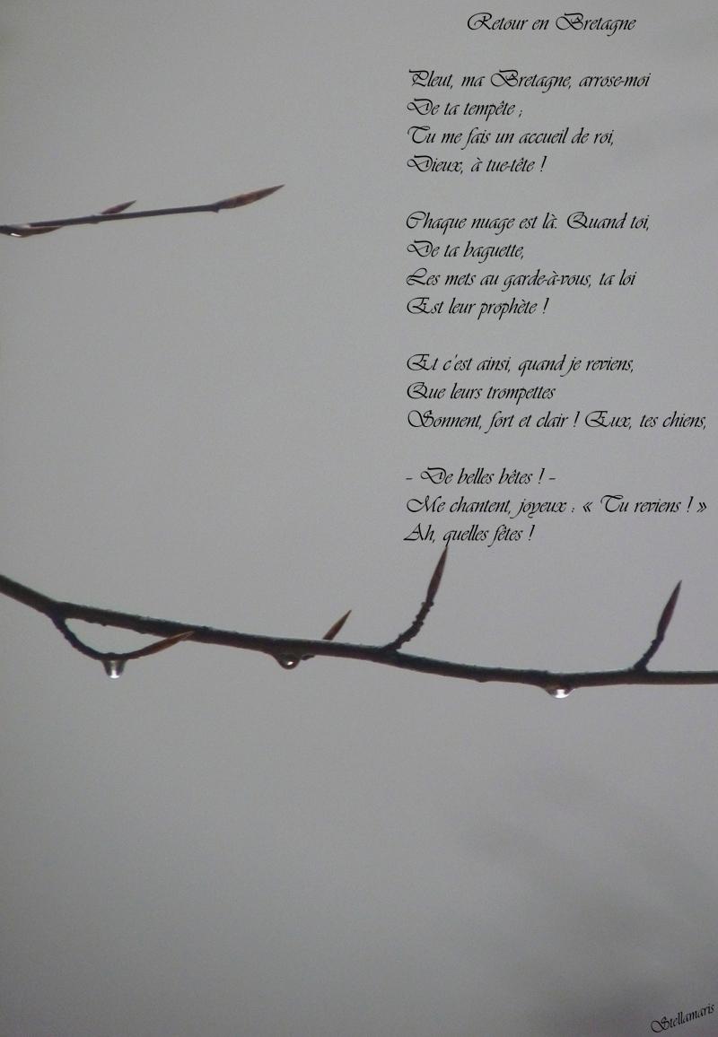 Retour en Bretagne / / Pleut, ma Bretagne, arrose-moi / De ta tempête ; / Tu me fais un accueil de roi, / Dieux, à tue-tête ! / / Chaque nuage est là. Quand toi, / De ta baguette, / Les mets au garde-à-vous, ta loi / Est leur prophète ! / / Et c'est ainsi, quand je reviens, / Que leurs trompettes / Sonnent, fort et clair ! Eux, tes chiens, / / – De belles bêtes ! – / Me chantent, joyeux : « Tu reviens ! » / Ah, quelles fêtes ! / / Stellamaris