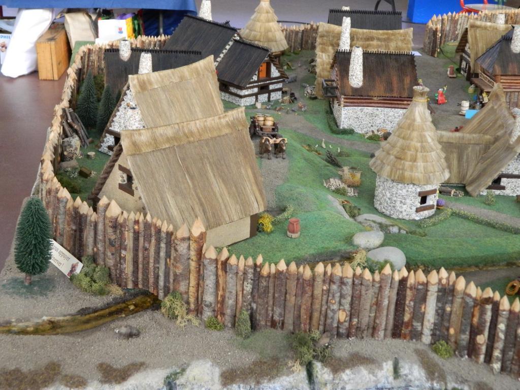 Le Village d'Astérix le Gaulois au 1/40  Dscn2980-3c06b04